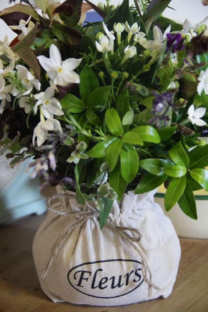 flowers fleurs