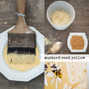 Mustard-Seed-Yellow-Collage2-1024x1024