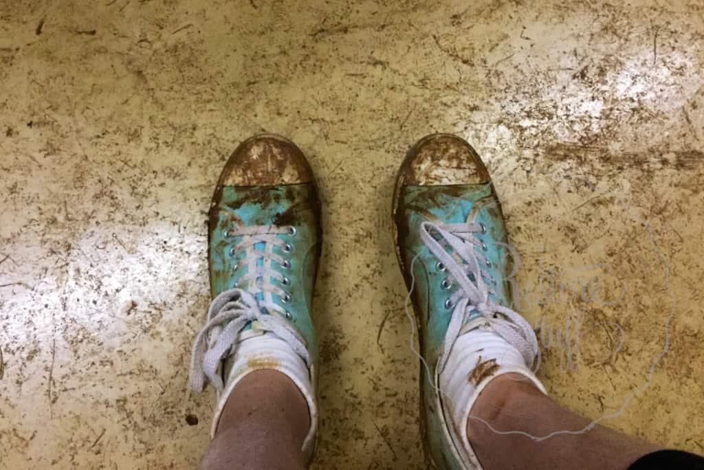 Ash -  Tori Canvas shoes