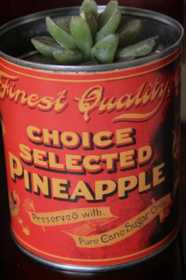 Choice Selected Pineapple can label