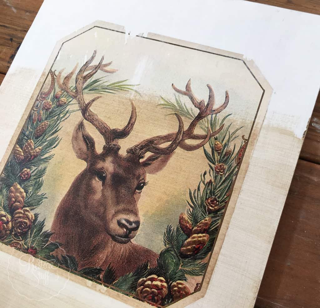 christmas-deer-0693