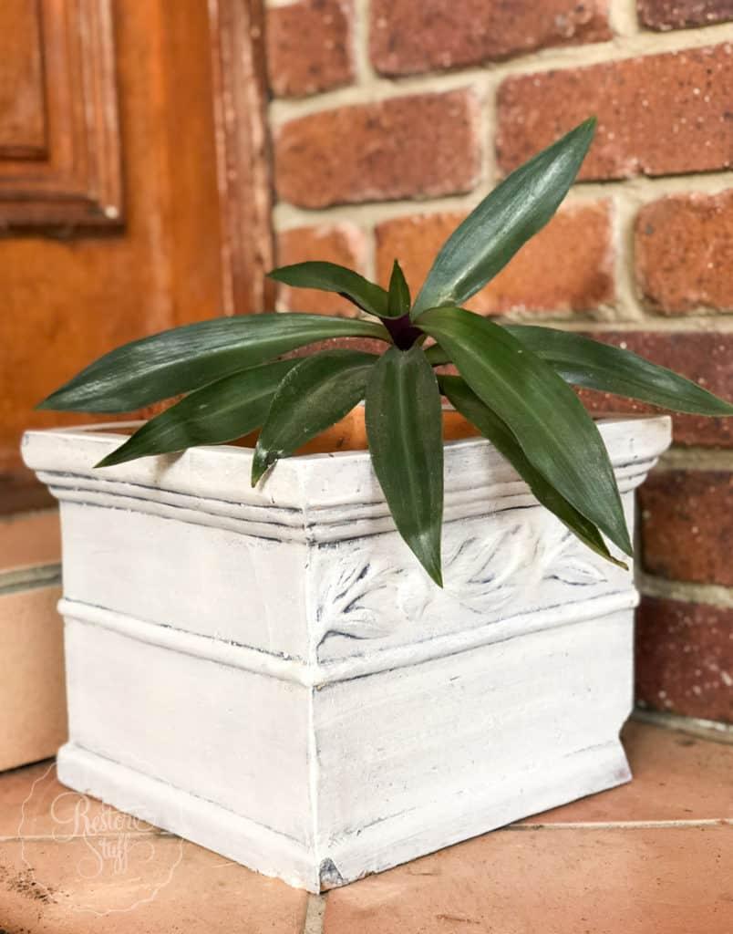 terracotta pot painted